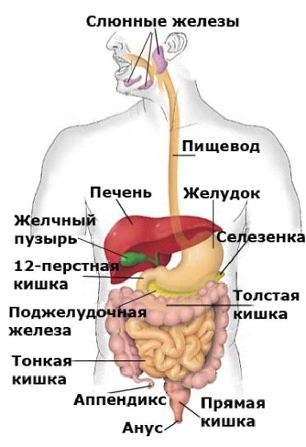 Стеноз позвоночного канала шейного отдела прогноз